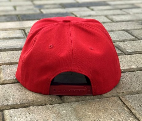 rich-fly-skull-roses-red-snapback-4